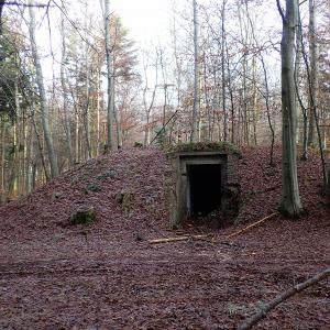 Tysker depot i Undallslund Skov